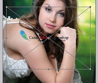 https://www.oficinadanet.com.br//imagens/coluna/2607/5.jpg