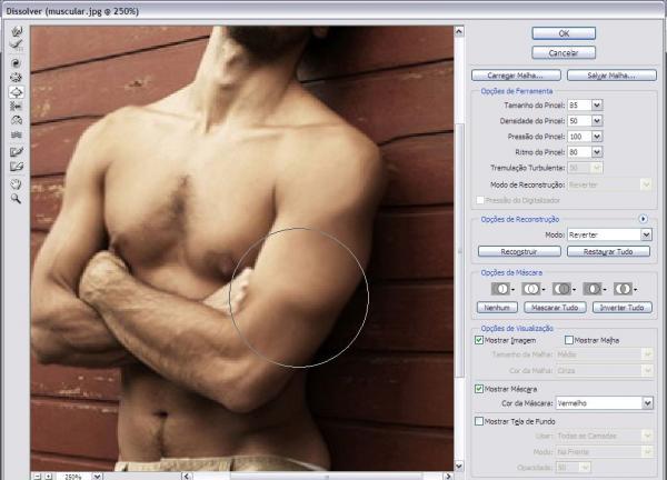 Aumentando a massa muscular