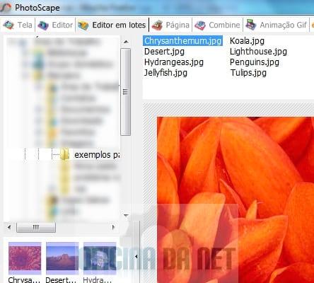 Como assinar imagens usando o Photoscape
