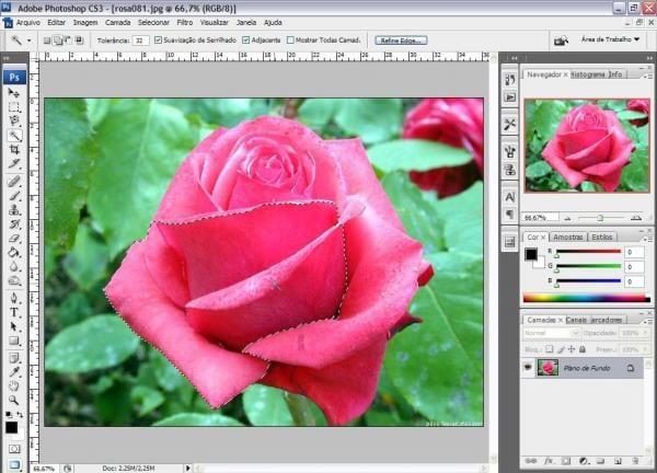 Destacando objetos em fotos no Photoshop