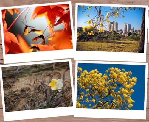 Criando uma galeria de fotos em CSS3