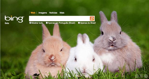 Qual a importância do buscador Bing para SEO?