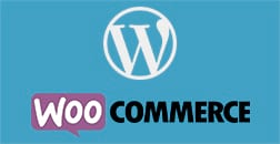 Instalação e Gerência de lojas virtuais com WordPress WooCommerce e design responsivo