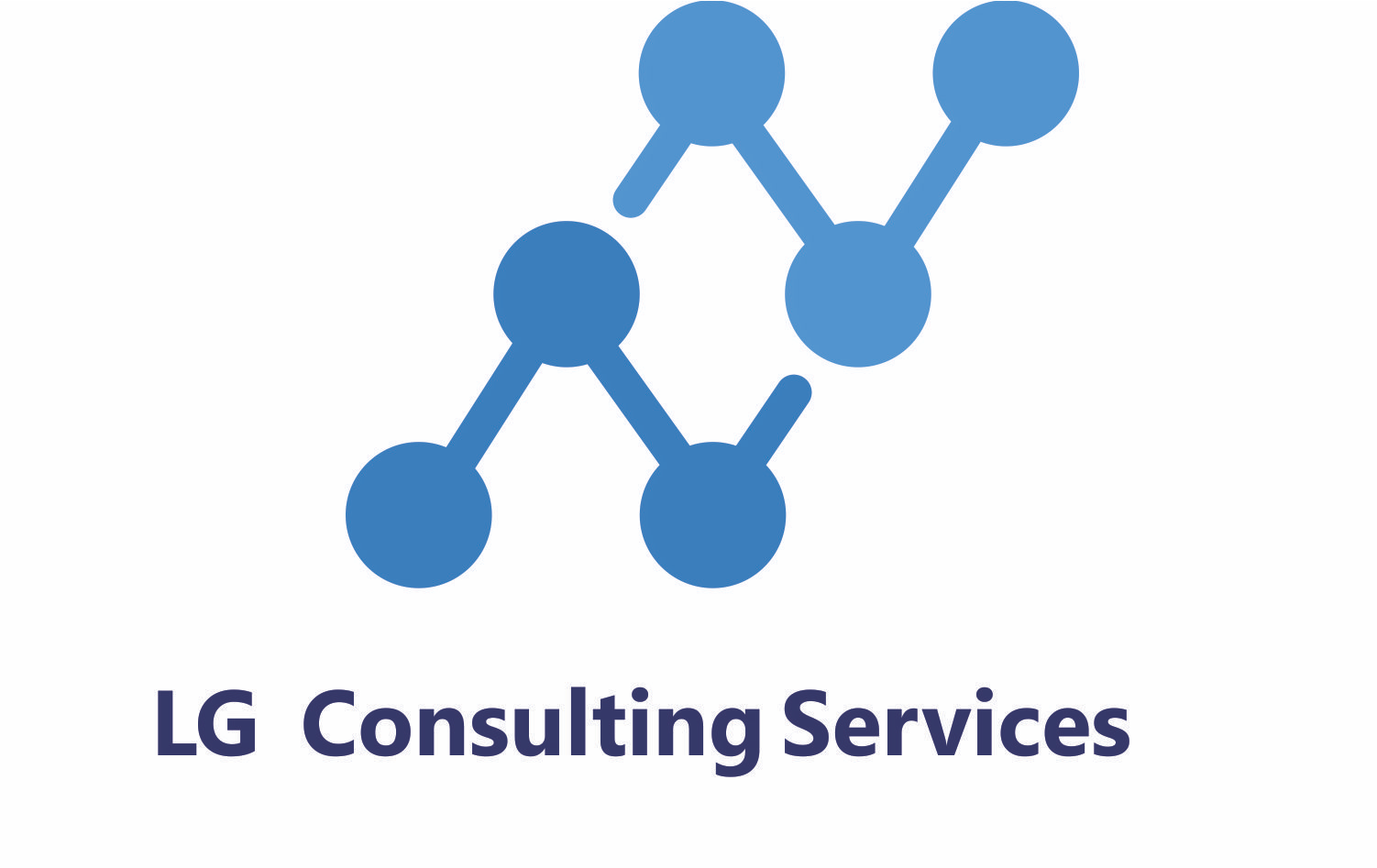 LG Consulting Services