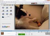 Álbuns do Picasa Web são transferidos para o Google+