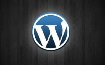 WordPress completa 10 anos de exist�ncia