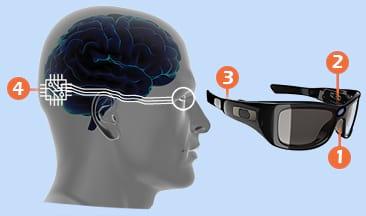 Pesquisadores prometem devolver a visão para as pessoas