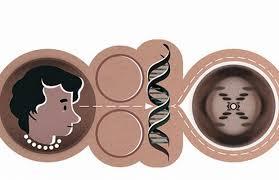 Bióloga Rosalind Franklin é homenageada pelo Google