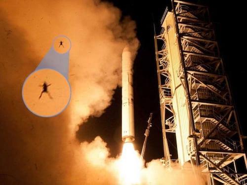 Sapo surge em foto de lançamento de foguete da Nasa