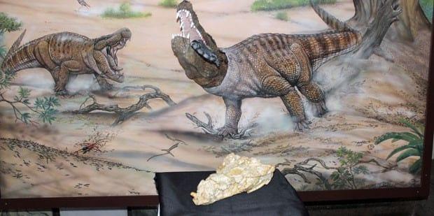 Cientistas apresentam a mais antiga espécie de réptil que viveu no Brasil