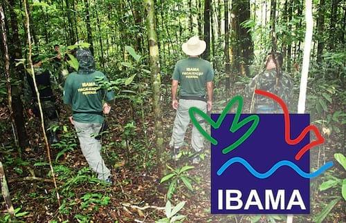 Processo Seletivo do IBAMA tem 20 vagas para TI; inscrições encerram hoje