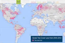 Usuários podem acompanhar mapa de desmatamento mundial através de site do Google