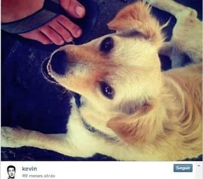 Primeira imagem do Instagram completa 4 anos de publica��o
