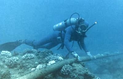 Cabo submarino deve acelerar a velocidade Internet