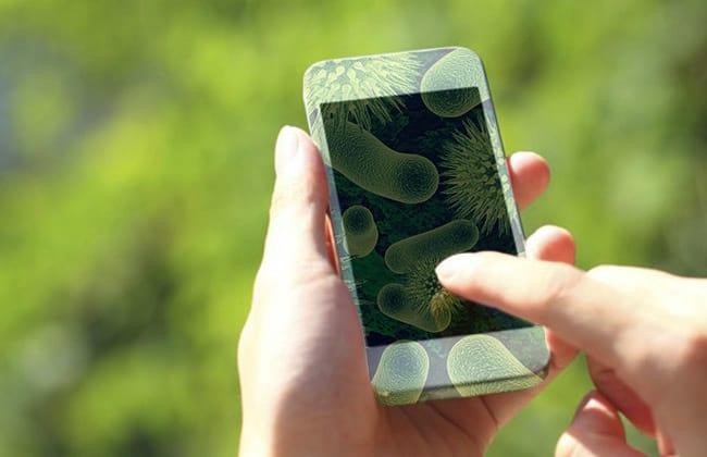 Smartphone ou vaso sanitário? Qual é MENOS sujo?