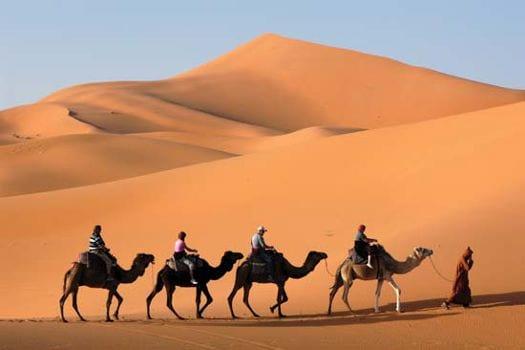Google registra imagens do deserto de Liwa no lombo de um camelo