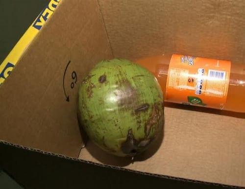 Surpresa: Ao comprar iPhone, idoso recebe coco e refrigerante