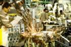 Com avanço da tecnologia, milhares de postos de trabalho serão extintos
