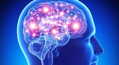 Para cientistas chips em cérebro humano poderá melhorar o rendimento intelectual