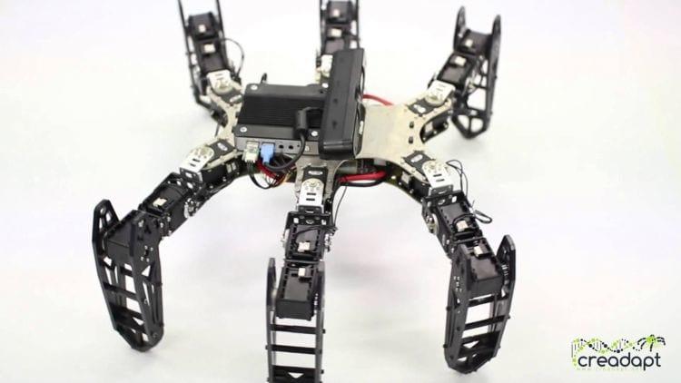 Cientistas desenvolvem software capaz de fazer robôs se adaptarem a danos
