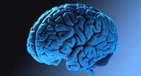 App pode ajudar pessoas com esquizofrenia