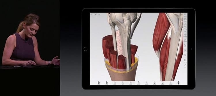 Apple anuncia iPad PRO