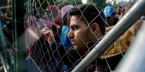 Google anuncia campanha para arrecadação de fundos para refugiados