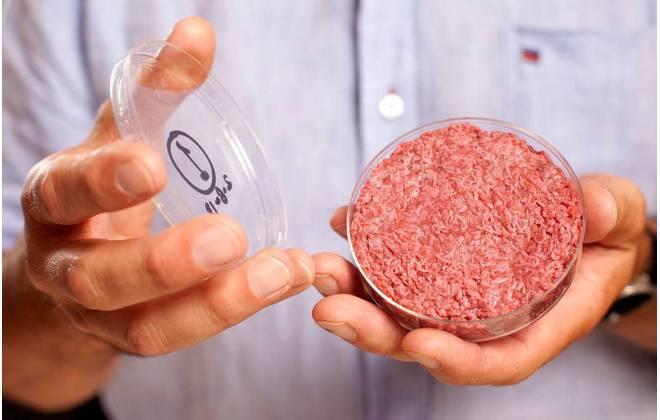Carne artificial pode chegar às prateleiras em até cinco anos