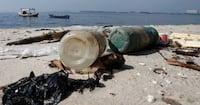 Larva capaz de comer plástico pode contribuir para a reciclagem
