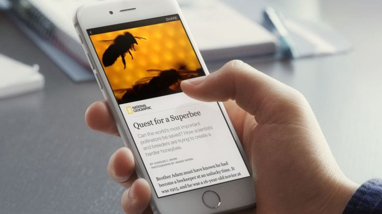 Instant Articles, do Facebook, chega ao Brasil