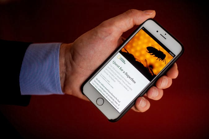 Novo Plugin do Facebook transforma post WordPress em Instant Articles