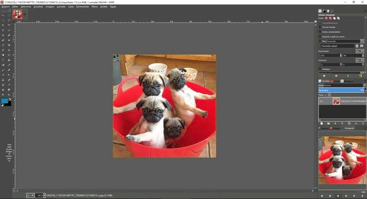 Que tal usar o GIMP com visual do Photoshop? Conheça o PhotoGIMP
