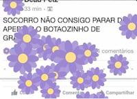Novo botão de flor no Facebook faz sucesso