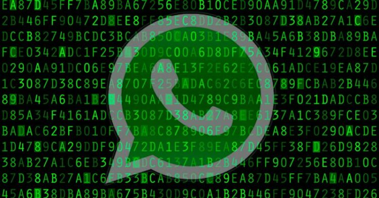 Como o governo brasileiro monitorou o WhatsApp de supostos terroristas?