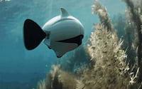 Biki: primeiro drone subaquático biônico do mundo com equilíbrio automatizado