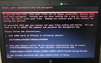 Microsoft diz que mais de 12 mil computadores já foram infectados com Petya