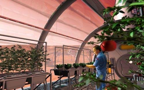 Nasa pretende usar urina de astronautas para desenvolver alimentos