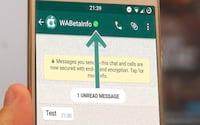 WhatsApp lança recurso de contas verificadas