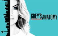 Novidades e lançamentos Netflix da semana (01/09 - 03/09/2017)