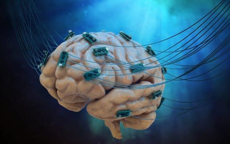 Brainternet