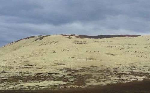 Inteligência Artificial da polícia inglesa não dá conta e confunde imagens de desertos com nudes