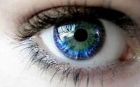 Google pode lançar recurso que identifica sua saúde através de foto da íris