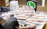 Whatsapp prepara ferramenta para alertar compartilhamento de correntes