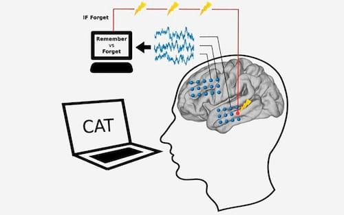 Inteligência artificial descobre como aumentar nossa memória