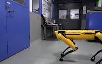 Já pensou se um robô pudesse abrir a porta para fugir com um amigo? Veja o vídeo