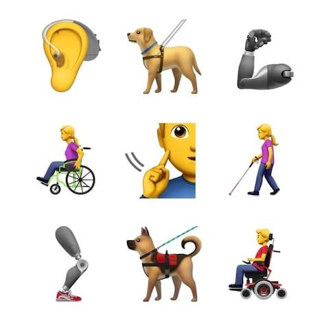 A lista inclui pessoas em cadeira de rodas, uma com bengala. Além da representação de um aparelho auditivo e ainda um cão guia.