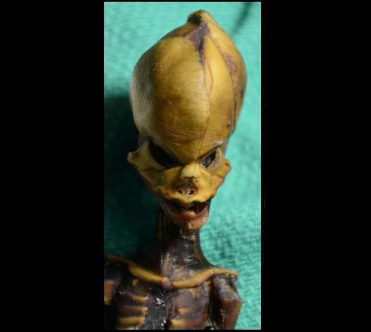 Cientistas analisam DNA do Alien do Atacama