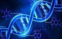 Cientistas confirmam existência de nova estrutura do DNA em células humanas