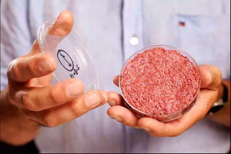 A primeira carne tecnológica feita
