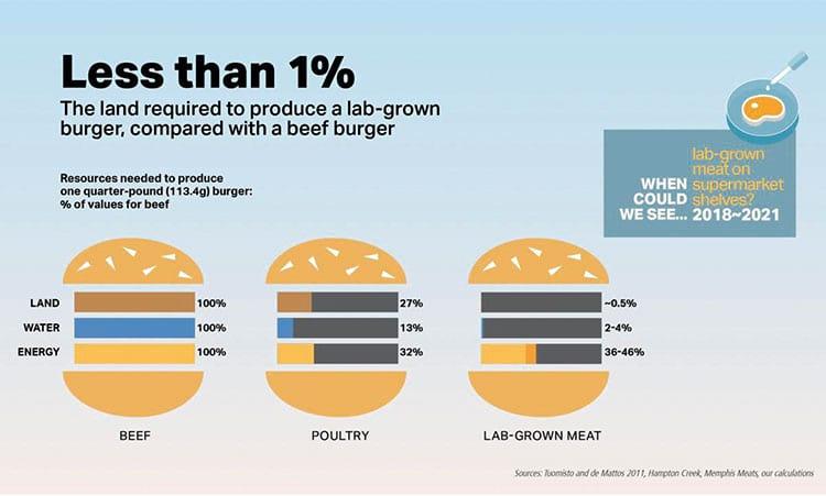 Comparação dos gastos de área, água e energia na produção de carne bovina, frango e carne em laboratório